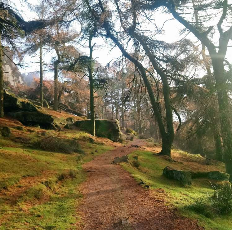 The Roaches Peak District with Study Work Travel blog