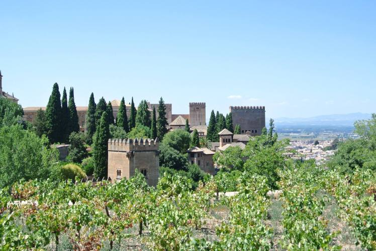 Granada Alhambra with Study Work Travel Blog