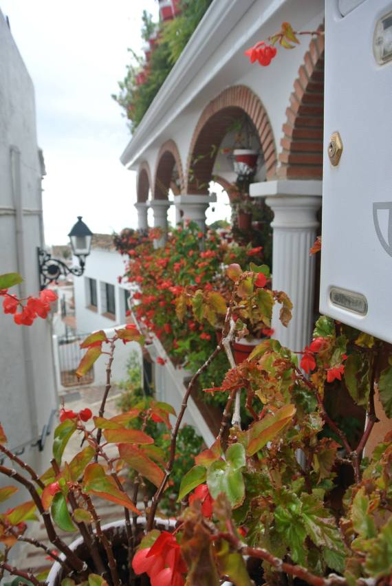 Mijas, Spain with Study Work Travel Blog