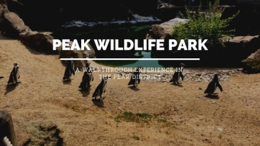 Peak Wildlife Blog Header
