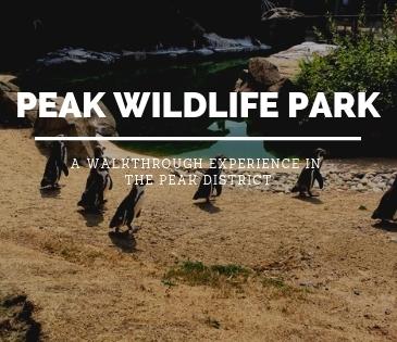 Peak Wildlife Blog Header