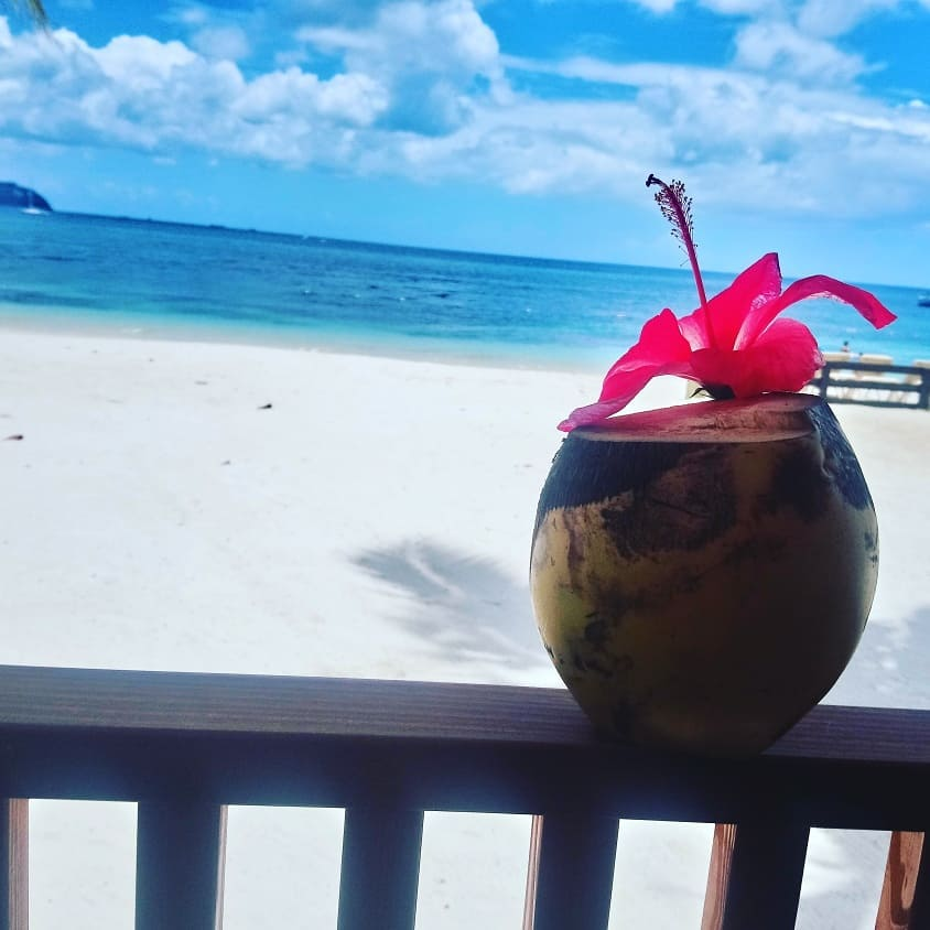 coconut drink on Saint Lucia beach with Study Work Travel Blog