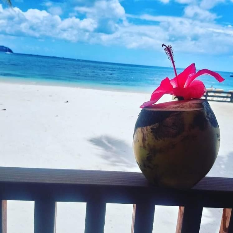 coconut drink on Saint Lucia beach with Study Work Travel Blog