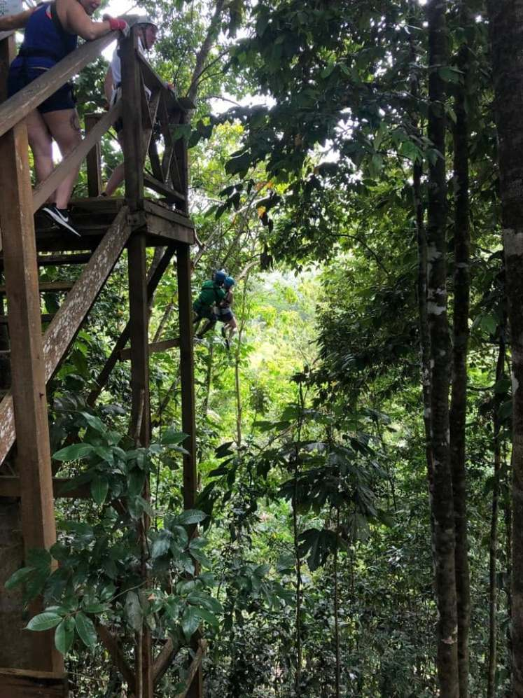 Zip-lining in Saint Lucia  with Study Work Travel Blog